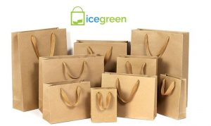 Reusable Paper Bags